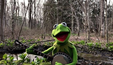 Picture of Kermit